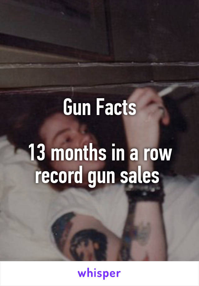 Gun Facts  13 months in a row record gun sales