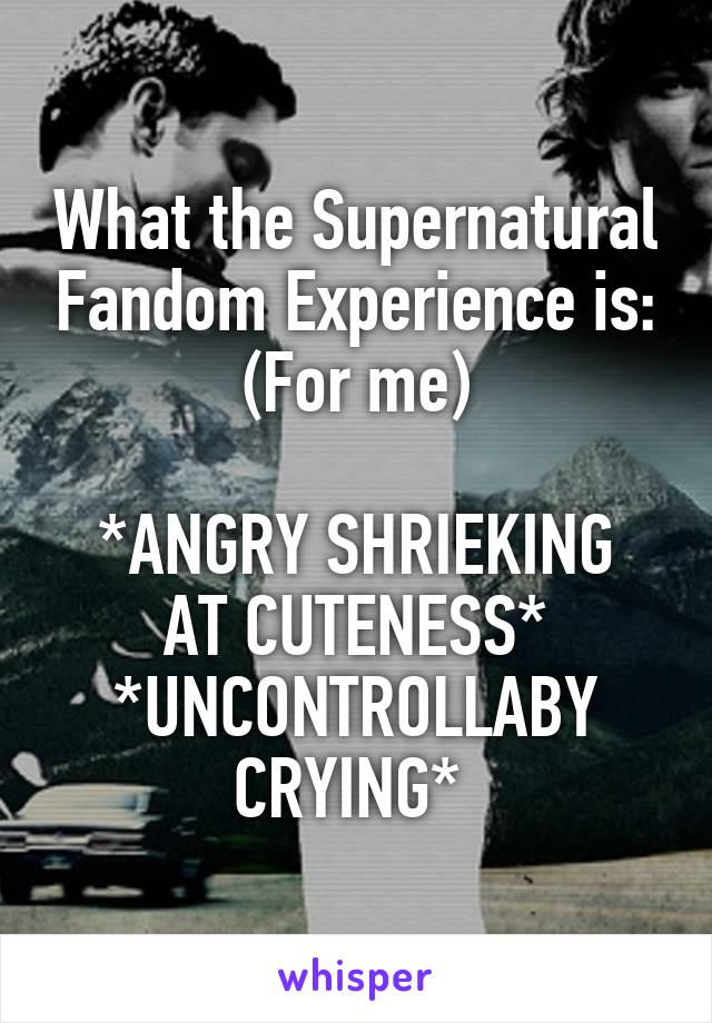 What the Supernatural Fandom Experience is: (For me)  *ANGRY SHRIEKING AT CUTENESS* *UNCONTROLLABY CRYING*