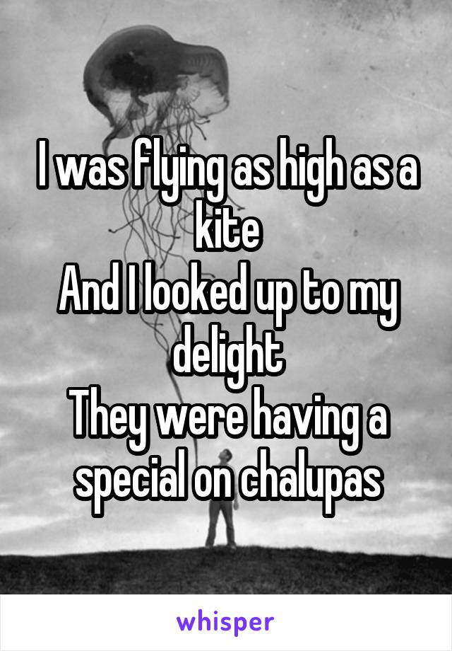 I was flying as high as a kite And I looked up to my delight They were having a special on chalupas