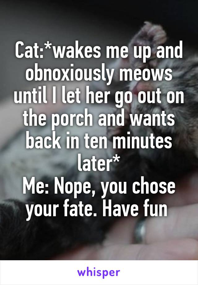 Cat:*wakes me up and obnoxiously meows until I let her go out on the porch and wants back in ten minutes later* Me: Nope, you chose your fate. Have fun
