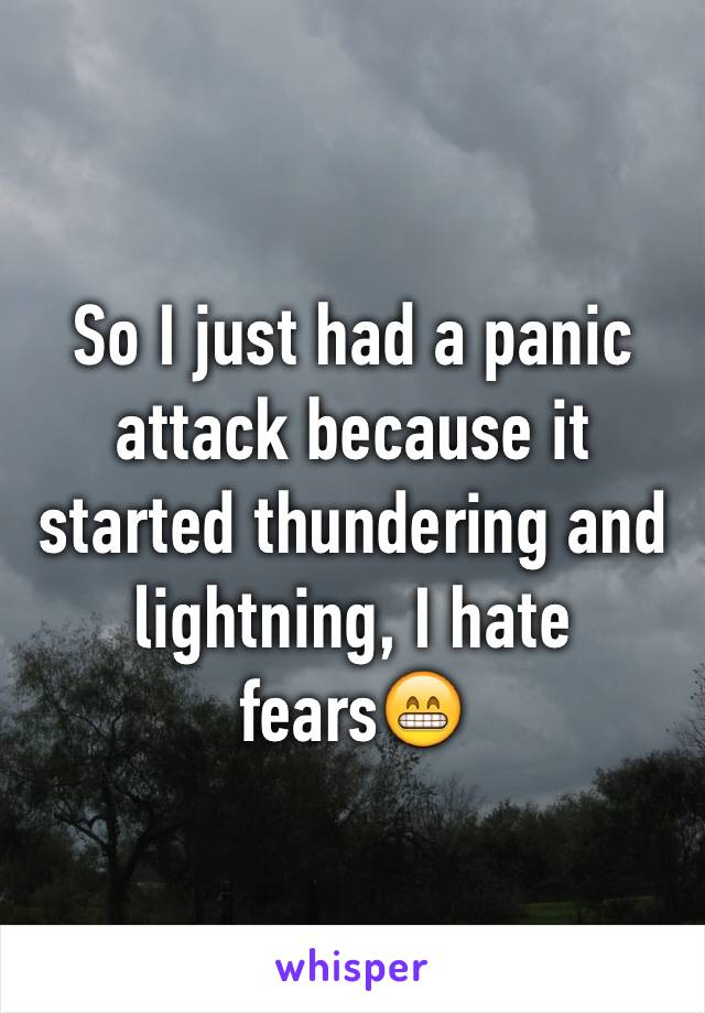 So I just had a panic attack because it started thundering and lightning, I hate fears😁