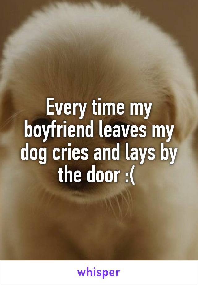 Every time my boyfriend leaves my dog cries and lays by the door :(