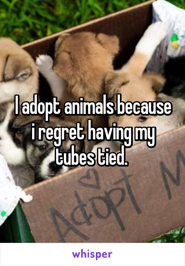 I adopt animals because i regret having my tubes tied.