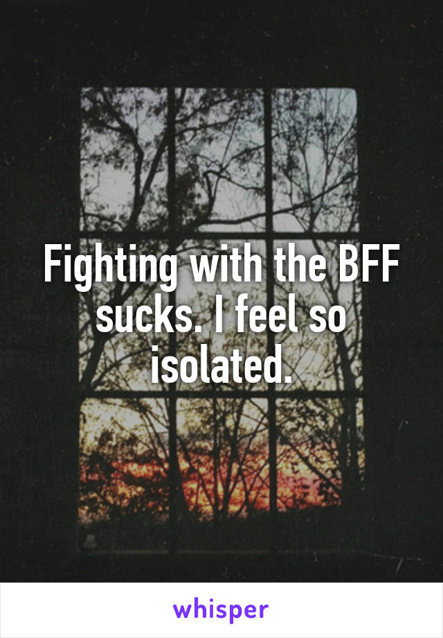 Fighting with the BFF sucks. I feel so isolated.