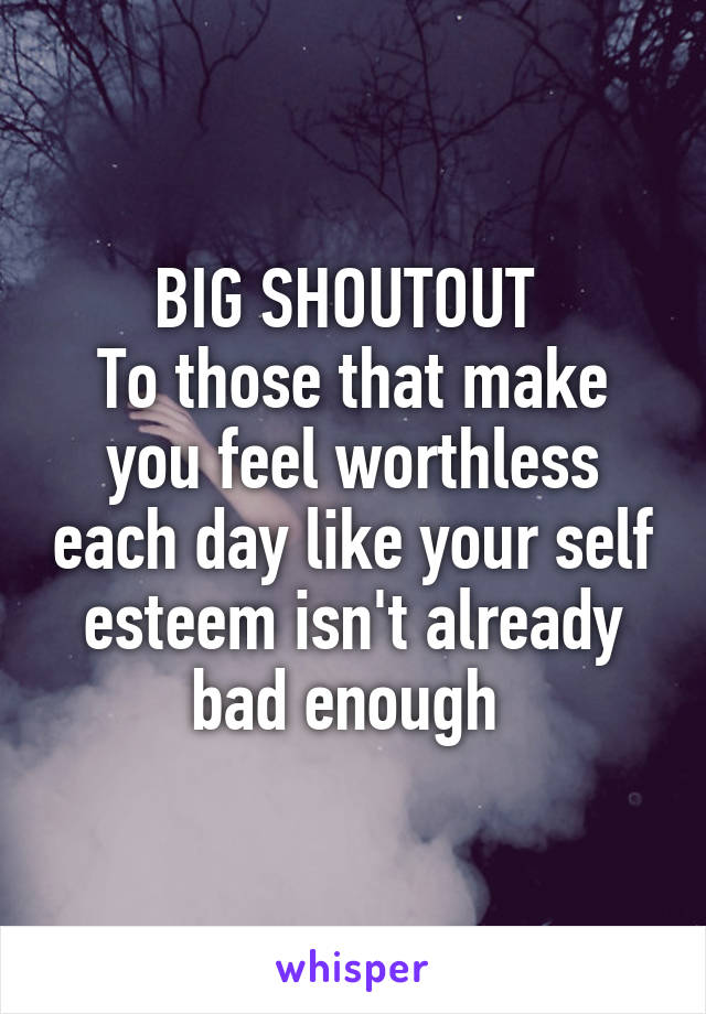 BIG SHOUTOUT  To those that make you feel worthless each day like your self esteem isn't already bad enough