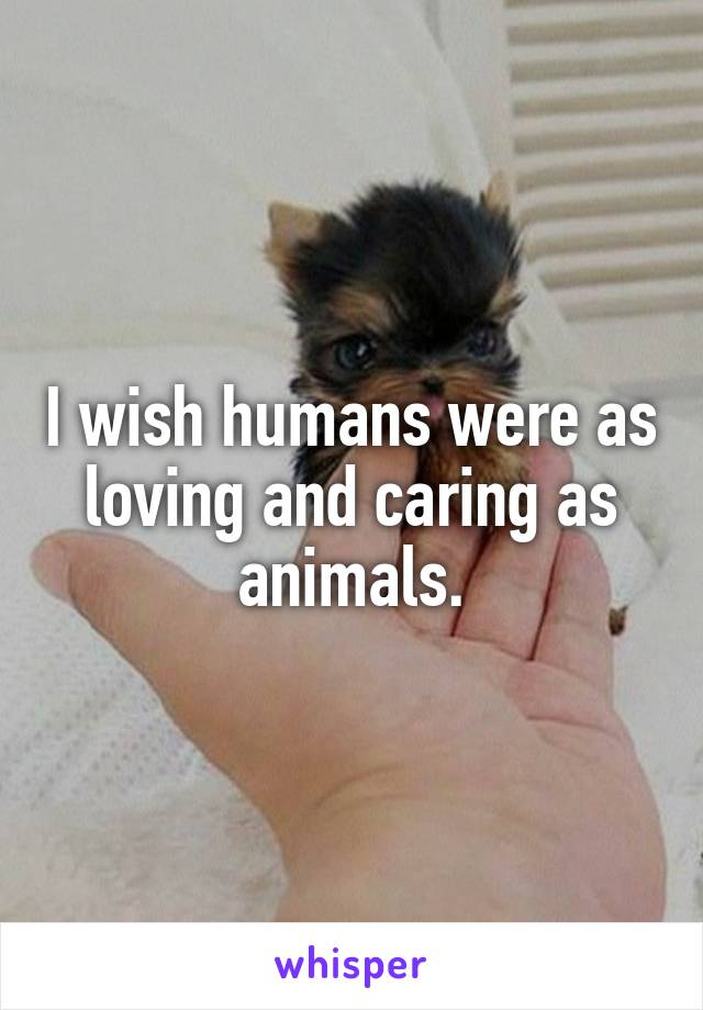 I wish humans were as loving and caring as animals.