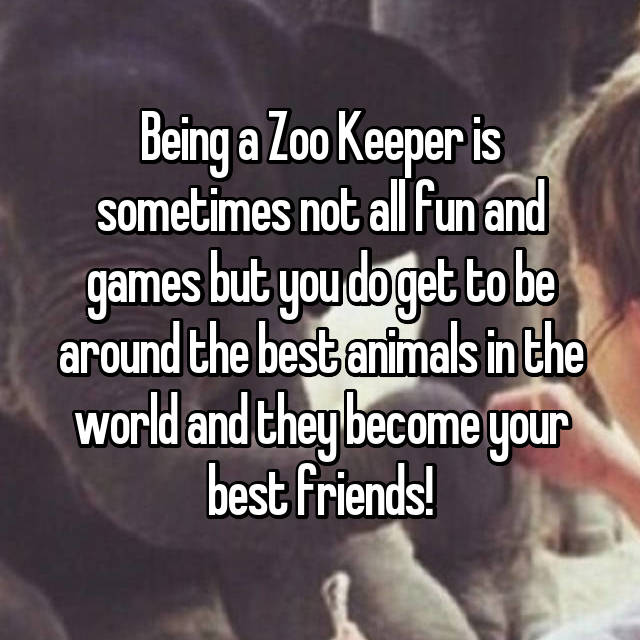 Being a Zoo Keeper is sometimes not all fun and games but you do get to be around the best animals in the world and they become your best friends!