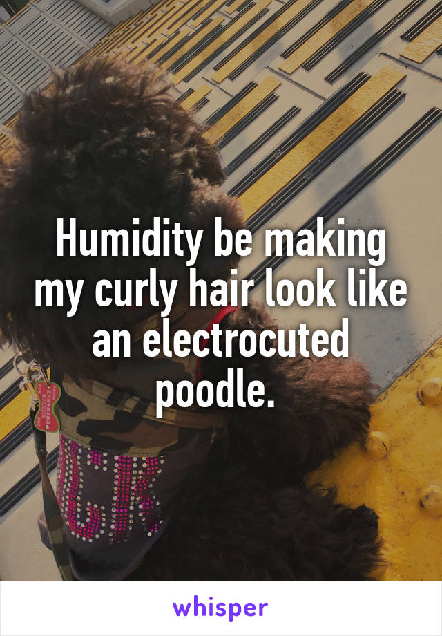 Humidity be making my curly hair look like an electrocuted poodle.
