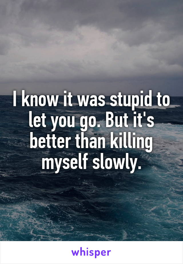 I know it was stupid to let you go. But it's better than killing myself slowly.