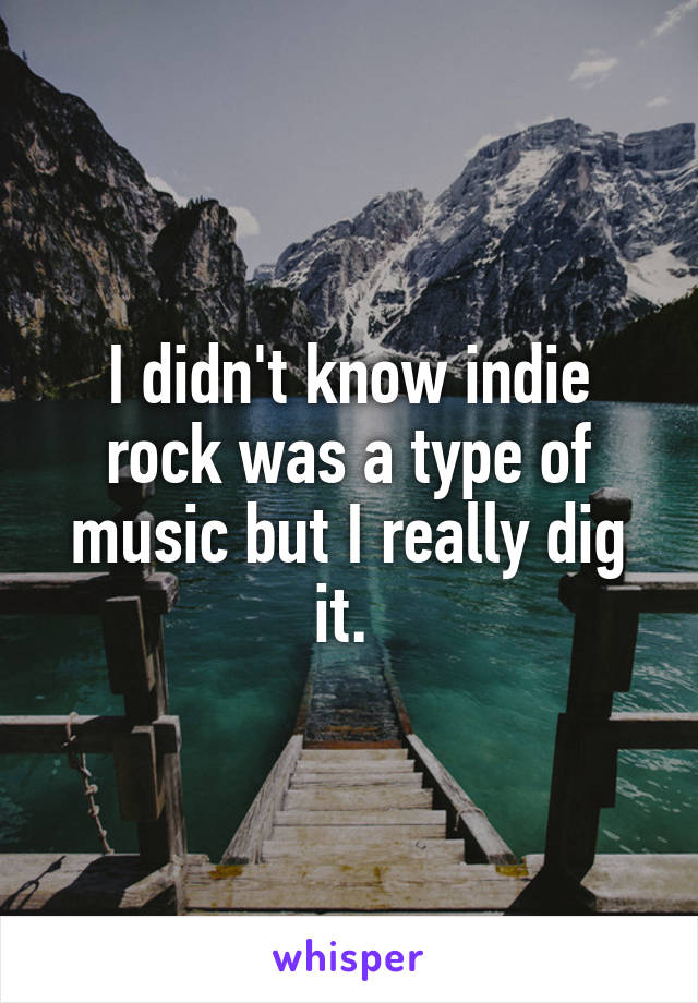 I didn't know indie rock was a type of music but I really dig it.
