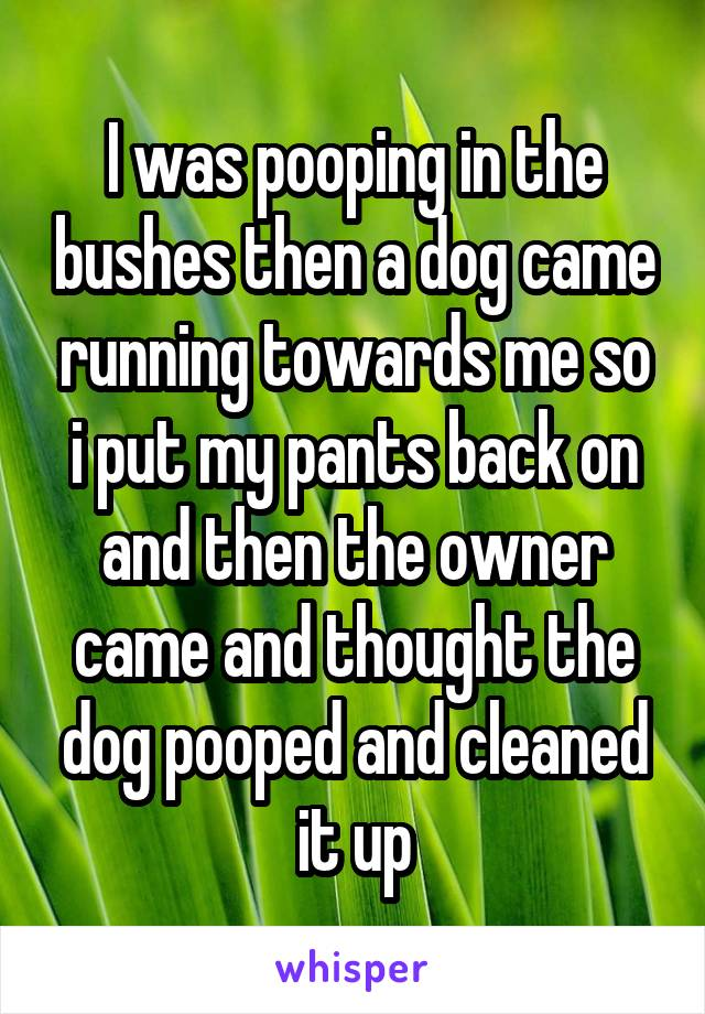 I was pooping in the bushes then a dog came running towards me so i put my pants back on and then the owner came and thought the dog pooped and cleaned it up