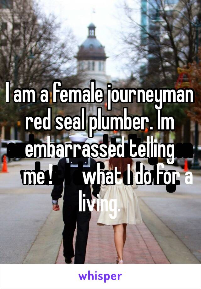 I am a female journeyman red seal plumber. Im embarrassed telling men️ what I do for a living.