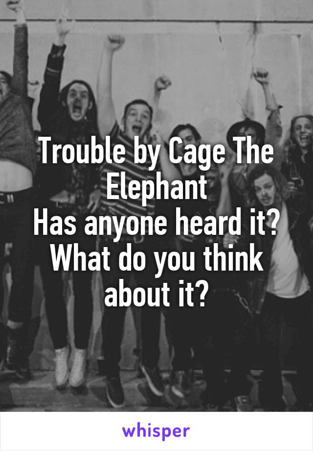 Trouble by Cage The Elephant Has anyone heard it? What do you think about it?