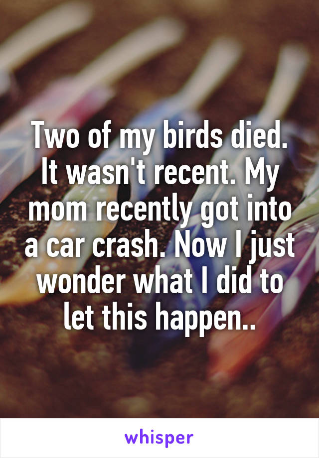 Two of my birds died. It wasn't recent. My mom recently got into a car crash. Now I just wonder what I did to let this happen..