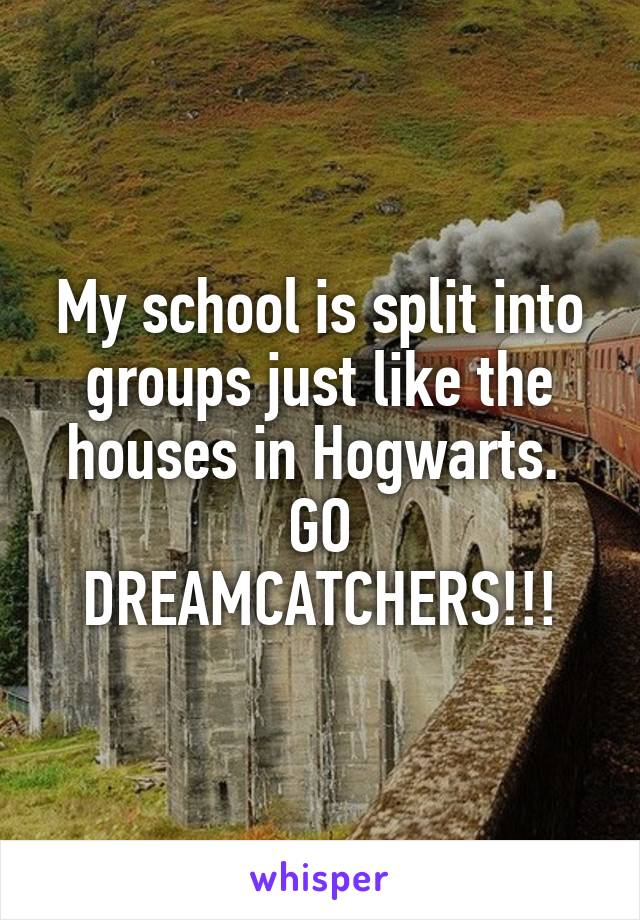 My school is split into groups just like the houses in Hogwarts.  GO DREAMCATCHERS!!!