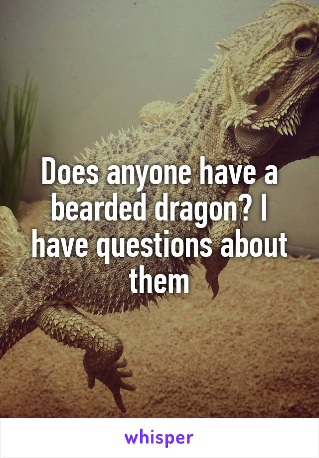 Does anyone have a bearded dragon? I have questions about them