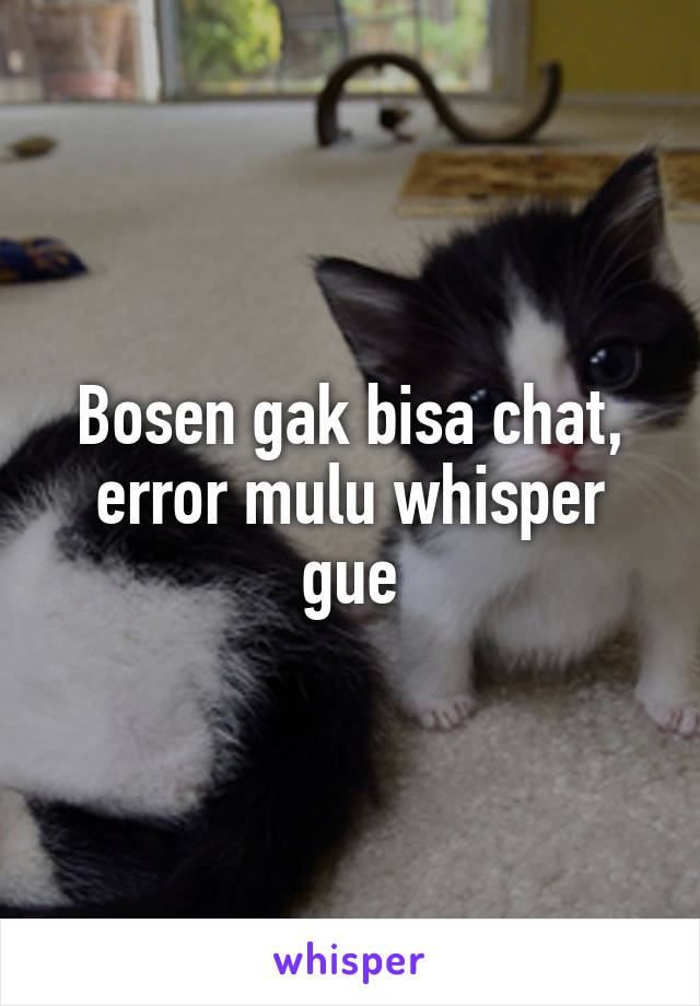 Bosen gak bisa chat, error mulu whisper gue