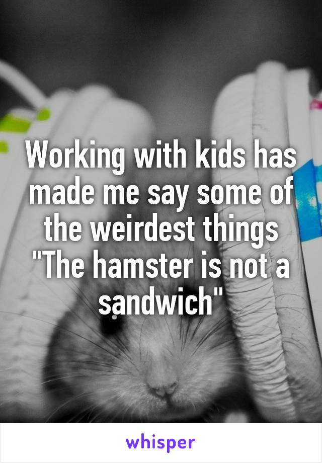 "Working with kids has made me say some of the weirdest things ""The hamster is not a sandwich"""