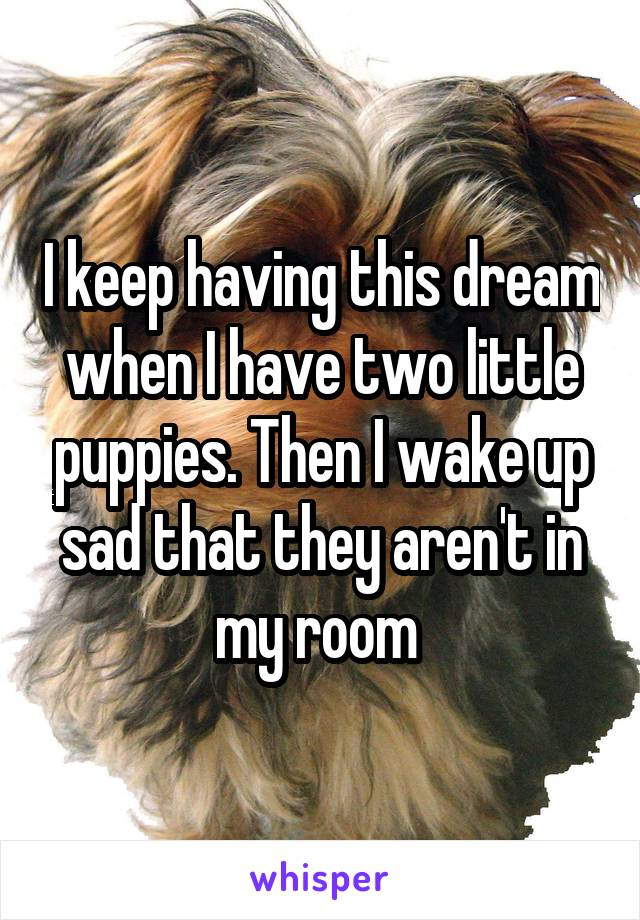 I keep having this dream when I have two little puppies. Then I wake up sad that they aren't in my room