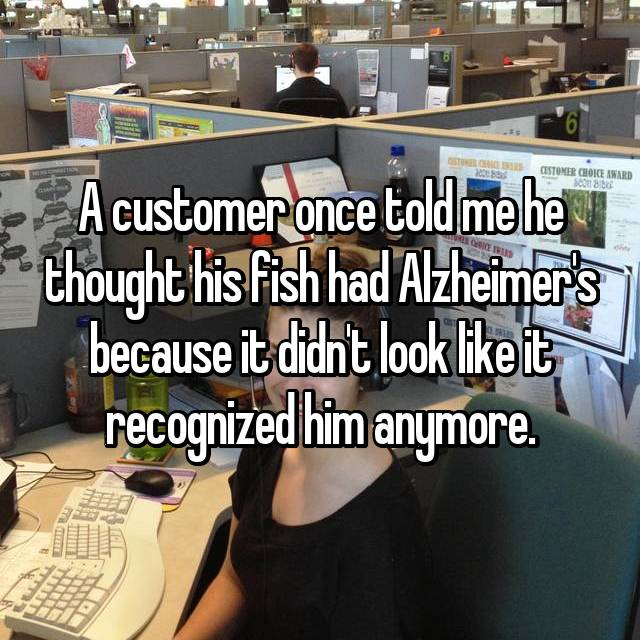 A customer once told me he thought his fish had Alzheimer's because it didn't look like it recognized him anymore.