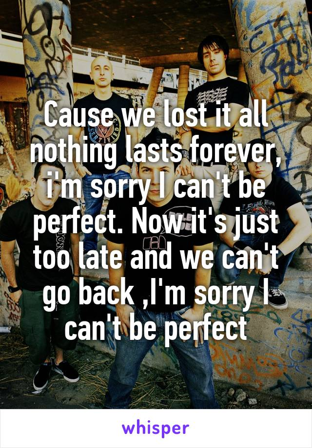 Cause we lost it all nothing lasts forever, i'm sorry I can't be perfect. Now it's just too late and we can't go back ,I'm sorry I can't be perfect
