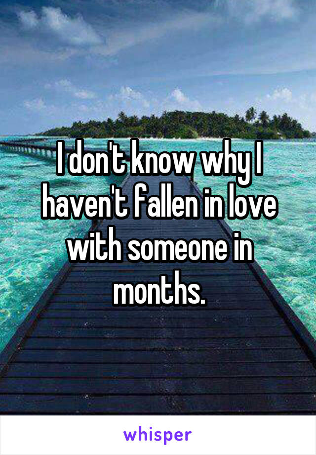 I don't know why I haven't fallen in love with someone in months.