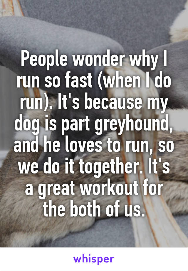 People wonder why I run so fast (when I do run). It's because my dog is part greyhound, and he loves to run, so we do it together. It's a great workout for the both of us.