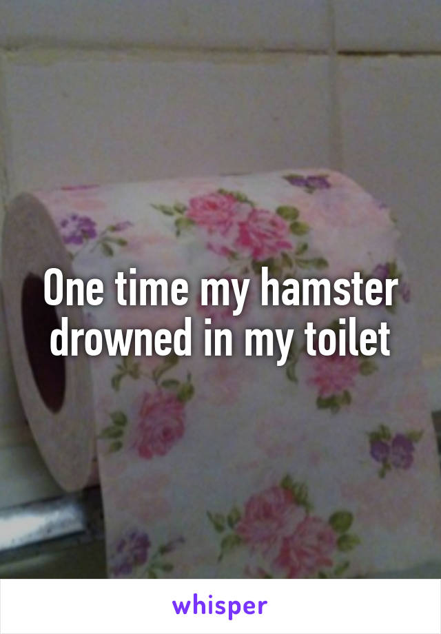One time my hamster drowned in my toilet