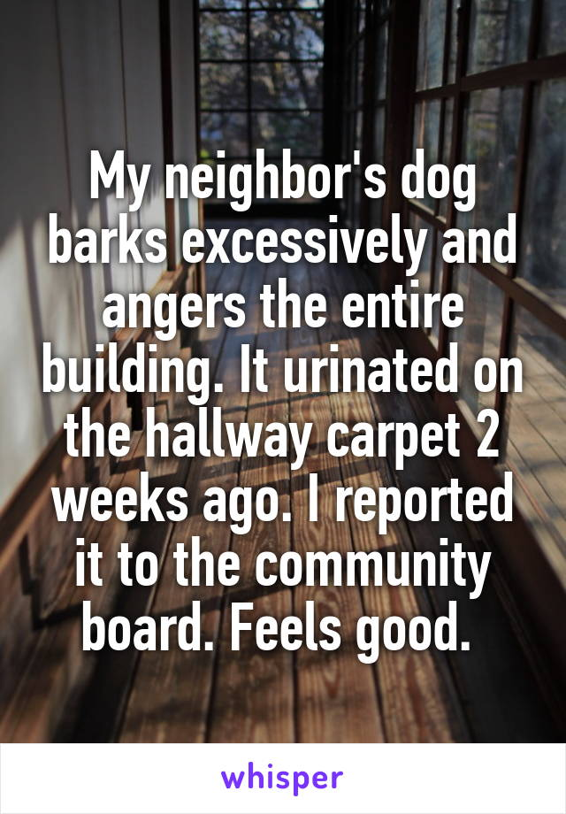My neighbor's dog barks excessively and angers the entire building. It urinated on the hallway carpet 2 weeks ago. I reported it to the community board. Feels good.