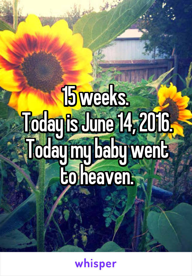15 weeks.  Today is June 14, 2016. Today my baby went to heaven.
