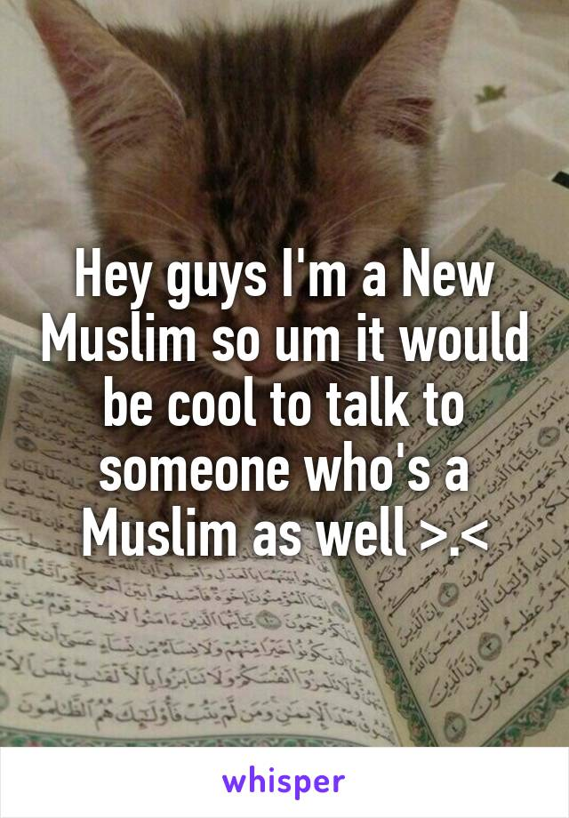 Hey guys I'm a New Muslim so um it would be cool to talk to someone who's a Muslim as well >.<