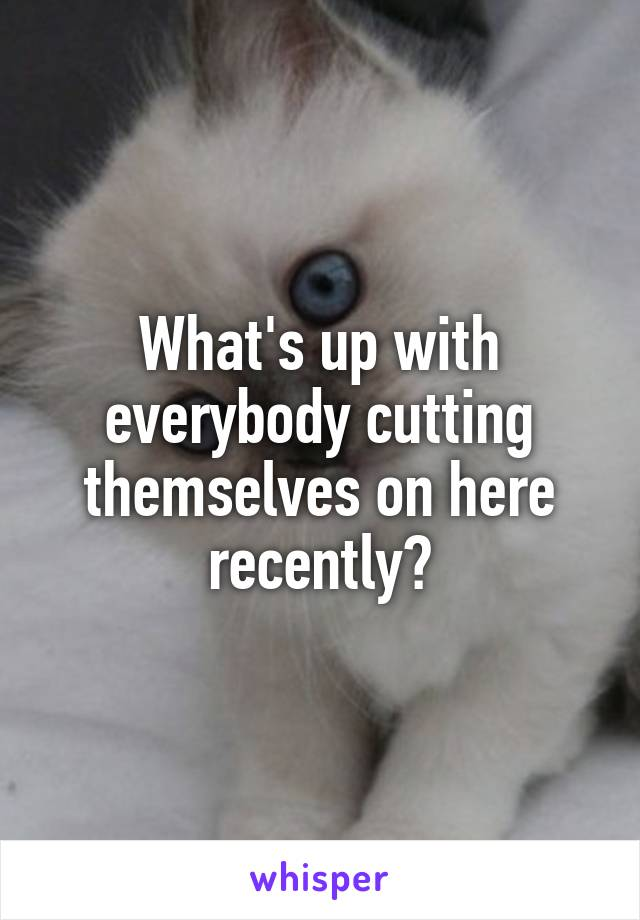 What's up with everybody cutting themselves on here recently?