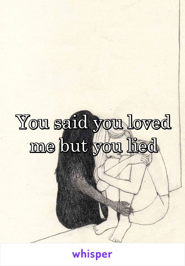 You said you loved me but you lied