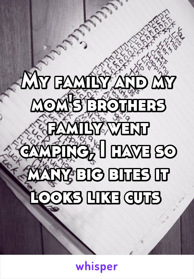 My family and my mom's brothers family went camping, I have so many big bites it looks like cuts