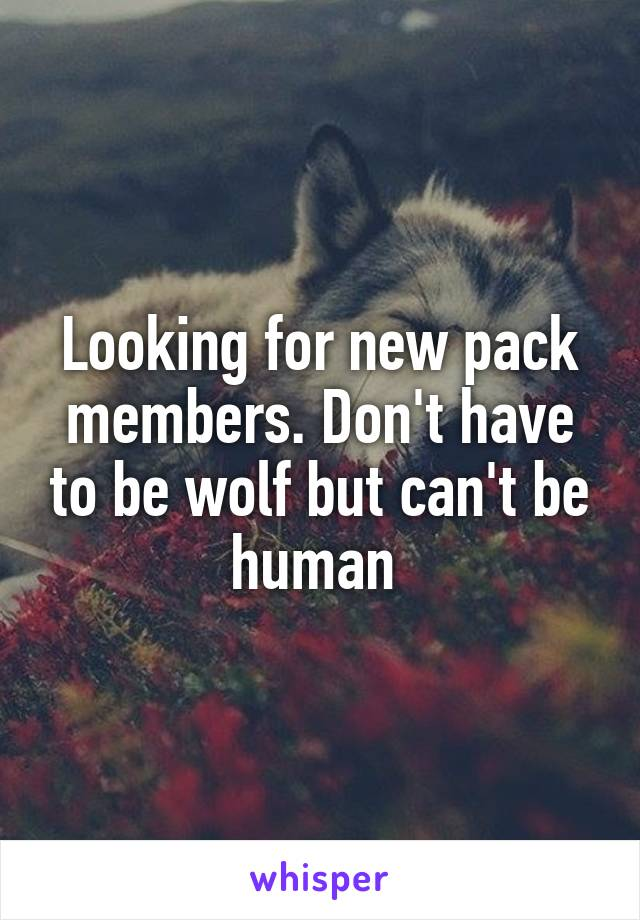 Looking for new pack members. Don't have to be wolf but can't be human