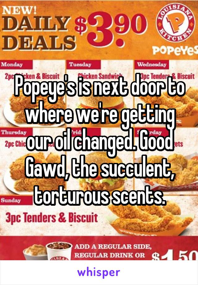 Popeye's is next door to where we're getting our oil changed. Good Gawd, the succulent, torturous scents.