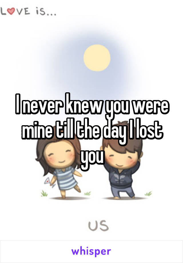I never knew you were mine till the day I lost you