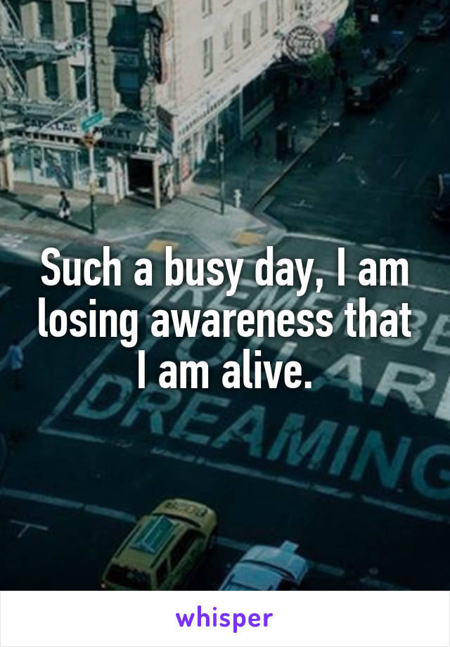 Such a busy day, I am losing awareness that I am alive.