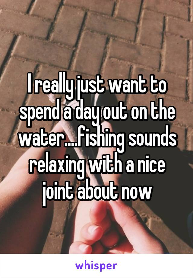 I really just want to spend a day out on the water....fishing sounds relaxing with a nice joint about now