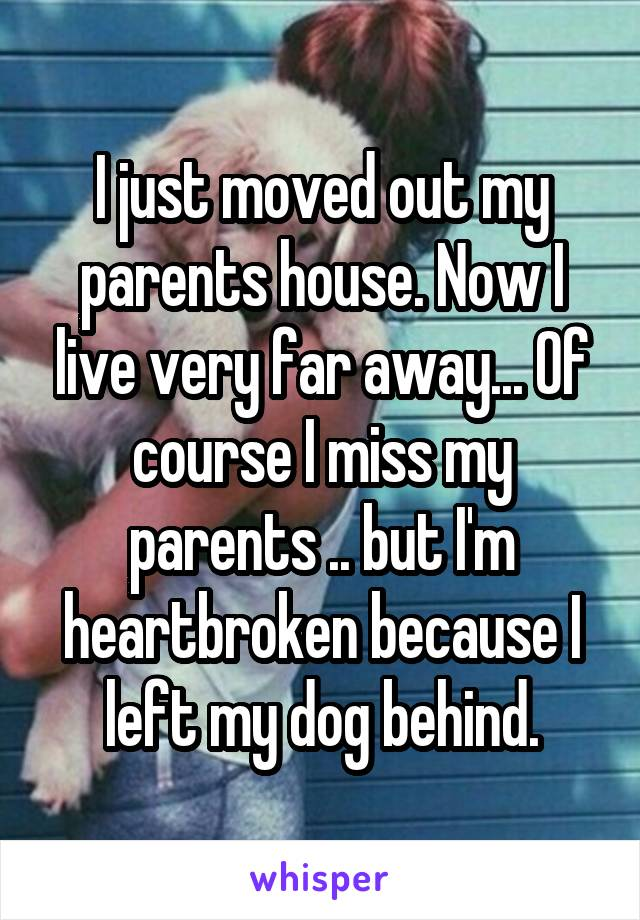 I just moved out my parents house. Now I live very far away... Of course I miss my parents .. but I'm heartbroken because I left my dog behind.
