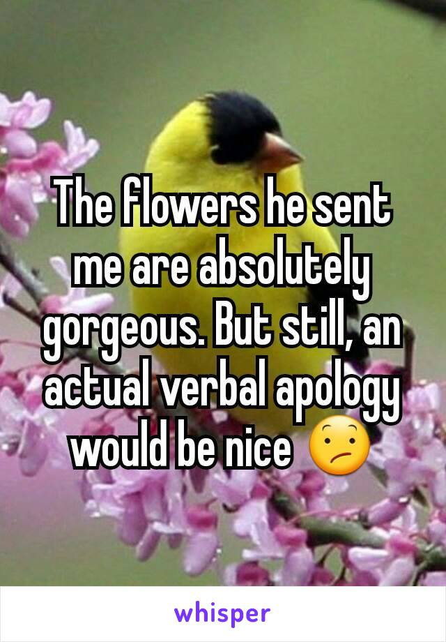 The flowers he sent me are absolutely gorgeous. But still, an actual verbal apology would be nice 😕