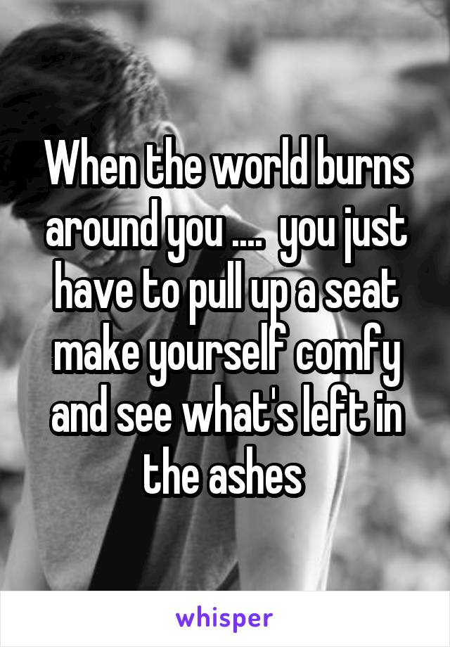 When the world burns around you ....  you just have to pull up a seat make yourself comfy and see what's left in the ashes