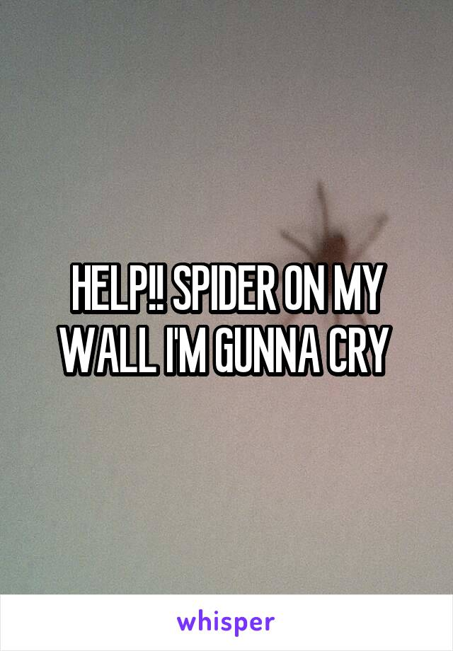 HELP!! SPIDER ON MY WALL I'M GUNNA CRY