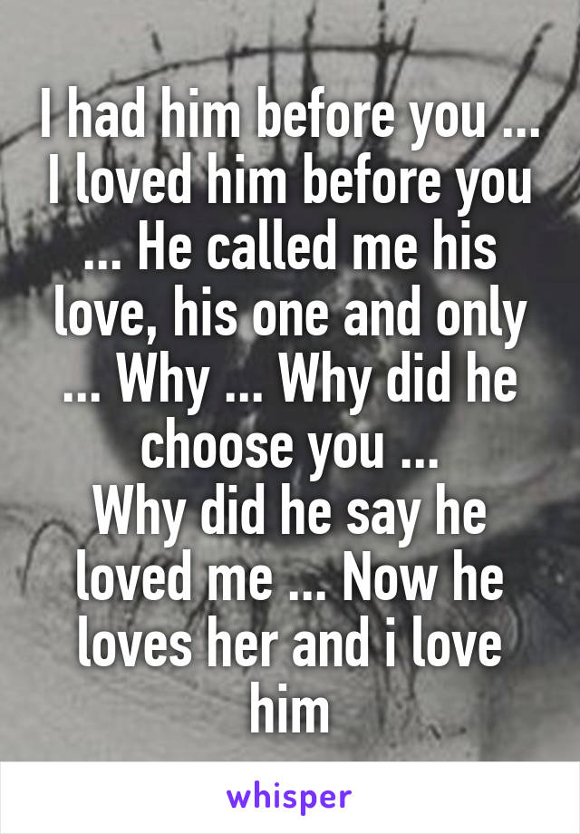 I had him before you ... I loved him before you ... He called me his love, his one and only ... Why ... Why did he choose you ... Why did he say he loved me ... Now he loves her and i love him