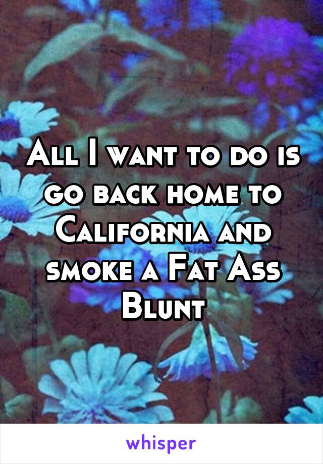 All I want to do is go back home to California and smoke a Fat Ass Blunt