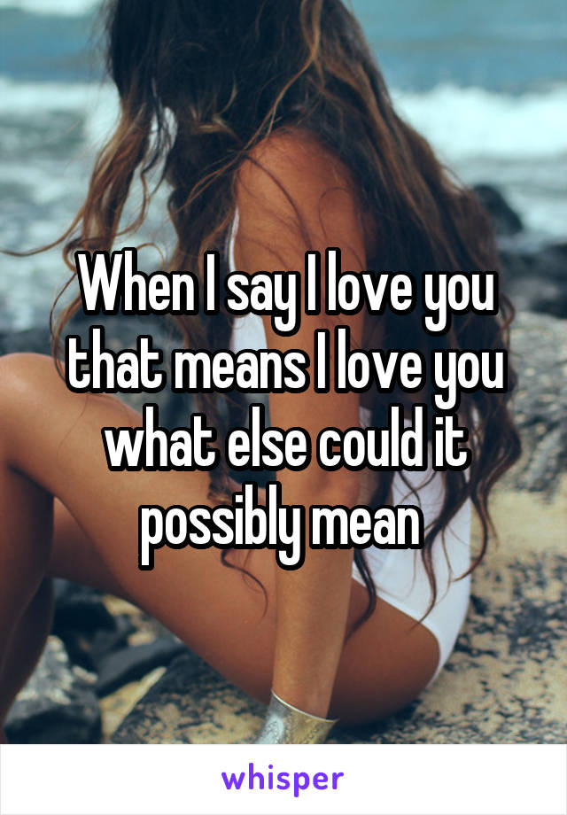 When I say I love you that means I love you what else could it possibly mean