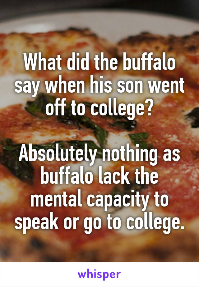 What did the buffalo say when his son went off to college?  Absolutely nothing as buffalo lack the mental capacity to speak or go to college.