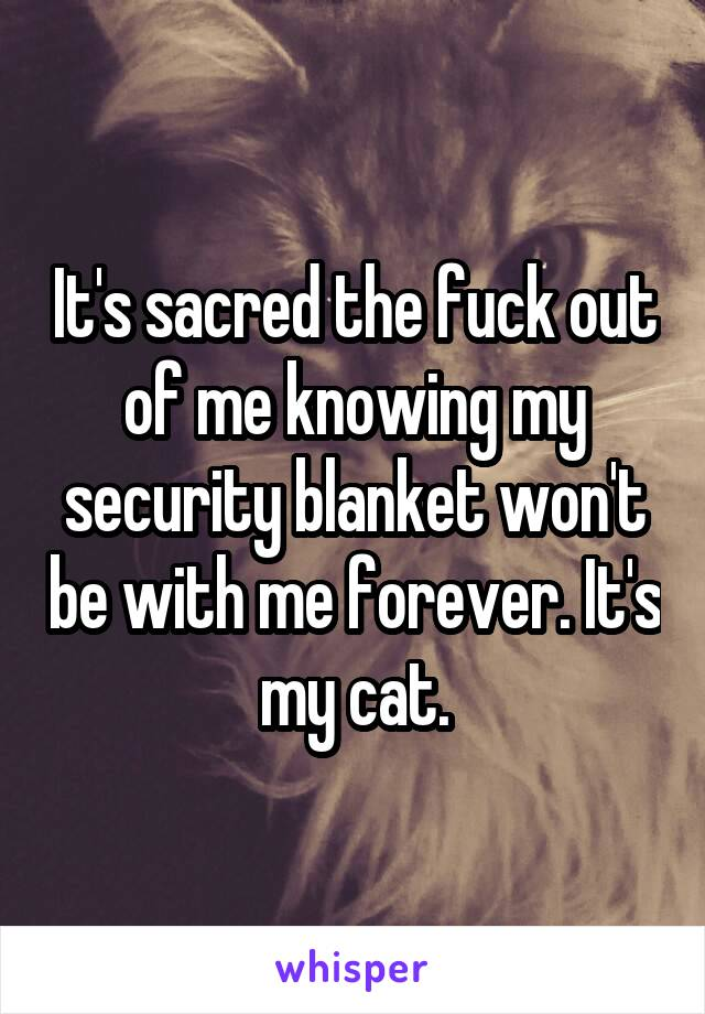It's sacred the fuck out of me knowing my security blanket won't be with me forever. It's my cat.
