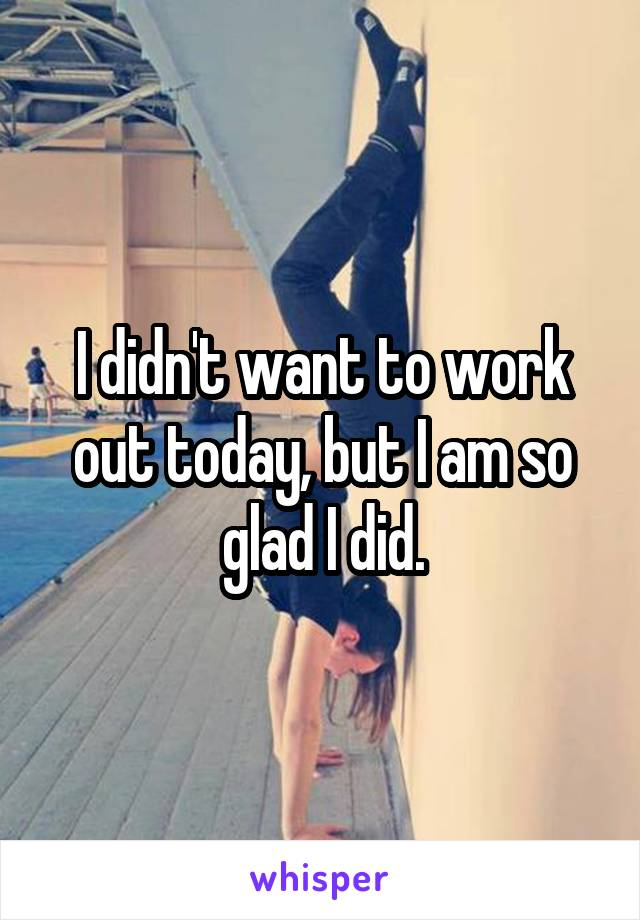 I didn't want to work out today, but I am so glad I did.