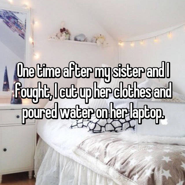 One time after my sister and I fought, I cut up her clothes and poured water on her laptop.